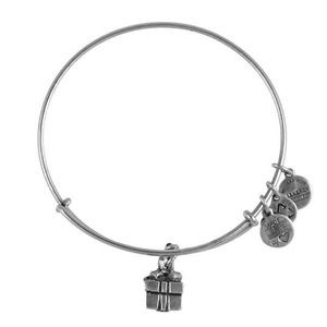 Alex & Ani Charity By Design Gift Box Charm Bangle